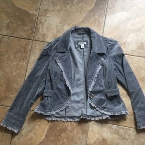 WHBM gray velvety jacket